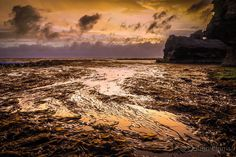 Sunset on a Thunder Point reefs. A low tide and calm seas enabled me to stand in the middle of this reef to get the golden glow of the hidden sun on this huge kelp bed. Luck for me no deep holes hidden beneath the kelp.  #warrnambool #destinationwarrnambool #visit12apostles #greatsouthcoast #liveinvic #perfocal #Australia #australiagram #ICU_sunset #escapeandexplore #admireaustralia #IG_AUSTRALIA #AUSTRALIA_OZ #greatoceanroad #southwestvic #sky_sultans #epic_captures #ig_sharepoint…