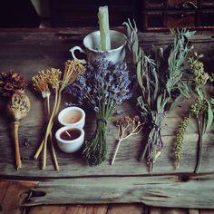 Flores e ervas místicas.