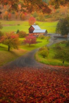 Autumn in Sleepy Hollow Dreams, Vermont