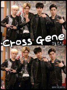 Cross Gene ❤