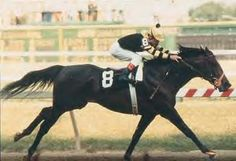Seattle Slew Year: 1977 The American Thoroughbread race horse ,owned by a couple from White Swan, WA, won the United States Triple Crown of Thoroughbred Racing in 1977. Named for the the sloughs which loggers once used to transport heavy logs through Seattle, the horse would continue to be one of the most famous race horses to come from Seattle. #Seattle Slew #race horses