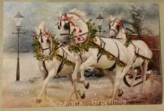"New White Arabian Horse Horses Pulling Sleigh Christmas Postcard Card FOR SALE • $7.50 • See Photos! Money Back Guarantee. Thank you for looking at my auction. Brand new, never displayed or used 6"" wide x 4"" tall art postcard of 3 beautiful white Arabian type horses pulling a Christmas 132153586095"