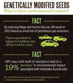 The environmental benefits of having GMO crops