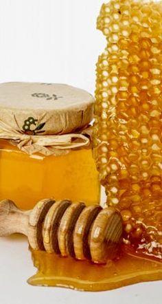 Infos über Honig: Die Wirkung von Honig ist fast so vielfältig wie seine zahlreichen Inhalts- und Begleitstoffe. Honig bekämpft rund 60 Arten von Bakterien ...
