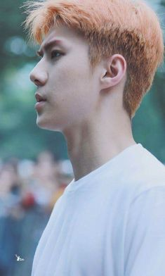 Shared by 𝐸𝒳𝒪 ️ϟ. Find images and videos about kpop, exo and sehun on We Heart It - the app to get lost in what you love. Chanyeol, Kyungsoo, Exo Ot12, Hunhan, We Heart It, Exo Members, Freckles, Boy Groups, Handsome
