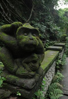 Like something straight out of an Indiana Jones movie... Monkey Forest in Ubud.