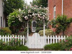 Wilde bloemen groeien Over witte piket hek