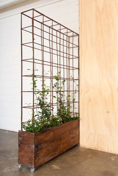 Build a rolling planter. Build a basic rectangle planter, put it on casters, and attach a simple-grid trellis. Just what I've been looking for!