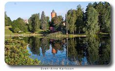 Morning walk at Kumla Sjöpark