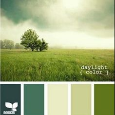Daylight Color palette by Design Seeds. Colour Pallette, Color Palate, Colour Schemes, Color Combos, Green Palette, Paint Schemes, Color Concept, Design Seeds, Colour Board