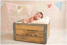 Pretty in Pink | Newborn Baby Girl Session | Banner | Missy B Photography | Walnut Creek, CA Newborn Photographer - Missy B Photography