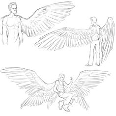 Nothing special. Just trying to learn how to draw wings.