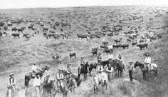 1800s+Wild+West | SEE ALSO: BARBED WIRE , CATTLE DRIVES , RANCHING–AMERICAN INDIAN ...