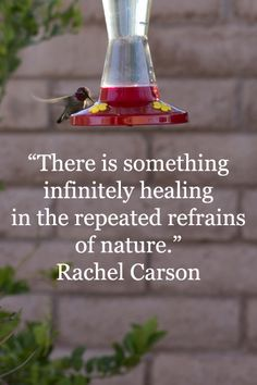 There is something infinitely <b>healing</b> in the repeated refrains of ...