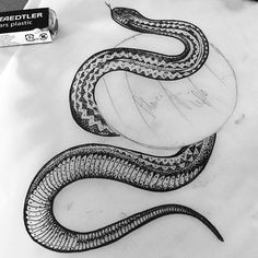 Snake tattoo design by Hannah Pixie Snowdon.