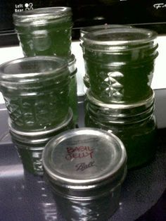 Basil Jelly.  So tasty with meat, over cream cheese or on a tomato sandwich.