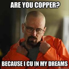 """31 Things Only """"Breaking Bad"""" Obsessives Will Find Funny. I love Breaking Bad so incredibly much. All of these are hilarious. Breaking Bad Memes, Serie Breaking Bad, Funny Valentine, Valentines Day Memes, Bad Valentines, Funny Quotes, Funny Memes, Hilarious, Laugh Quotes"""