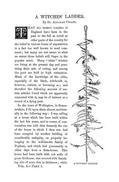 "Fascinating... About Witches' Ladder - a piece of string or rope with feathers in it... originally used as a bird scare... ""Whether or not the original Witches' ladder was ever used for magic, today witches ladders definitely are."""