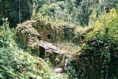 Espiritu Pampa or Vilcabamba. The last city of the inca's in the jungle. The ruins some cleared but most still overgrown. Its not often visited and more something for the adventurous traveller. The trip and back takes at least 10 days.