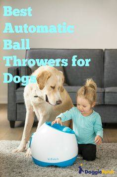 Which is the best automatic #ball thrower for dogs? The iFetch, PetSafe, and Go Dog Go are the primary dog ball launchers on the market today. They are sturdy, well-built #machines that have been proven to work with dogs of all types. A number of companies make smaller hand launchers as well. These aren't electronic or automated, so you'll have to use your own hand power to make them work.