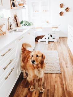 Vintage Details Meet Modern Design Inside Kristin Johns' Home Tour – My CMS Kristin Johns, Home Decor Kitchen, Home Kitchens, Gold Kitchen, Kitchen Nook, Apartment Kitchen, Kitchen Design, Layout Design, Boho Home