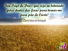 #Card| #RiquezasDaIgreja - Santo Inácio de Antioquia