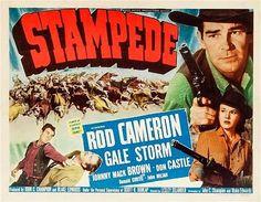 Stampede / Panique sauvage au Far-West - Lesley Selander 1949 http://western-mood.blogspot.fr/2016/01/stampede-panique-sauvage-au-far-west.html#links