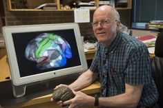 """#Neuroscientists Helped Compile an """"Accurate Map of the Human Brain"""" - Live Trading News: Live Trading News Neuroscientists Helped Compile…"""