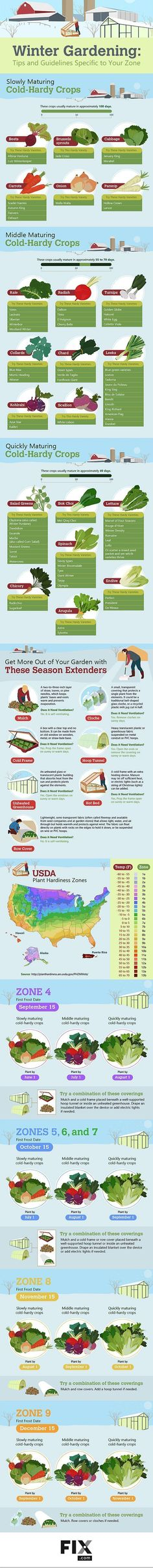 Ultimate Guide To Have An Indoor Garden For Winter   [Inforgraphic]