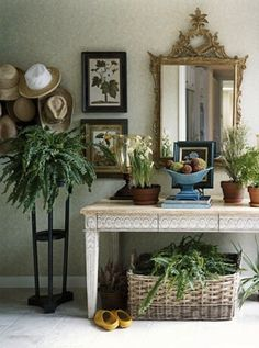 entry, Susan Zises Green in House Beautiful