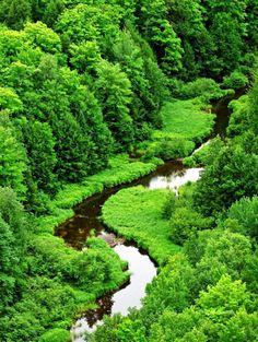 a river runs through it - green