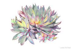 Succulent #2 by Louise De Masi