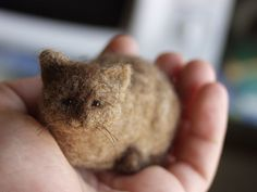 miniature needle-felted cat from Stuffed animals by Natasha Fadeeva (http://www.fadeeva.com/animals.html) // the whole site is jaw-dropping.