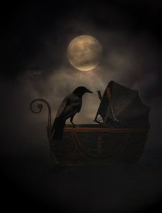 Sleep, young one. We are all you have left, child. Never stray from my comforting wing, I shall fly only when you sleep...