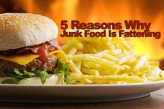 5 Reasons Why Junk Food is Fattening | Paleo Magazine