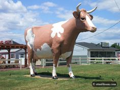 Roadside oddity, Giant Cow. Wilkes-Barre, PA