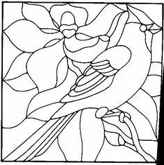 Cardinal and magnolia