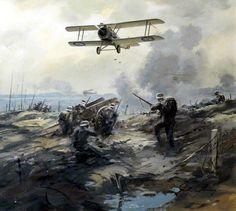 1917 11 Cambrai, De Havilland DH 5 - John Young
