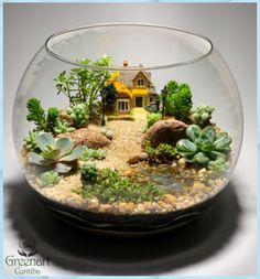 Terrarium Scene, Build A Terrarium, Terrarium Plants, Succulent Terrarium, Planting Succulents, Letterbox Flowers, Deco Nature, Bottle Garden, Cactus Y Suculentas