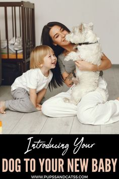 Today we give you a series of keys to promoting a healthy and balanced coexistence between dogs and babies. Puppy Care, Dog Care, Baby Dogs, Dogs And Puppies, Wrinkle Dogs, Dog Grooming Tips, Dog Cleaning, Dog Health Care, Dog Activities
