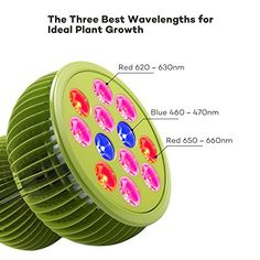 TaoTronics are the cheapest priced LED Grow light available in the market. Learn more about these LED grow light bulbs in this post. Hydroponics System, Hydroponic Gardening, Gardening Tips, Best Grow Lights, Grow Lights For Plants, Led Grow Light Bulbs, Plant Lighting, Luz Led, Photosynthesis