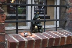 Finding The Many Dwarfs of Wrocław in Poland