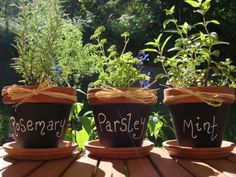 terra cotta pots, raffia bows, paint on black chalkboard paint, use chalk to label/mark your herbs. ADORABLE.