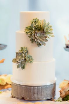 succulent cake   Figlewicz Photography   Glamour & Grace