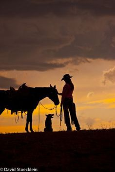 Cowgirl silhouette - cowgirl with her horse and dog.