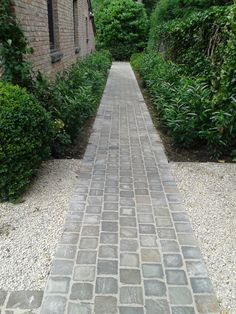 What You Can Do To Improve Your Landscaping using Garden Arbor Everyone that owns a home wants to take pride in it. Garden Arbor, Garden Paths, Cottage Garden Plants, Home And Garden, Back Gardens, Outdoor Gardens, Landscape Design, Garden Design, Beautiful Home Gardens