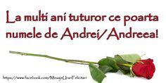 La multi ani tuturor ce poarta numele Andrei/Andreea!