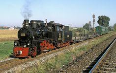 Felder, Steam Locomotive, Gauges, Diesel, British, Train, Pictures, Diesel Fuel, Ears Piercing