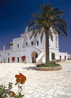 This looks like a nice place to spend a week or two or more! In beautiful Puglia region of Italy, the Masseria San Domenico. (www.masseriasandomenico.com/en/)