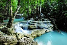Deep forest waterfall Wall Mural